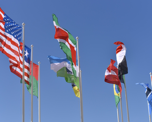 world flags COMMERCIAL
