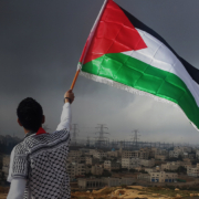 palestine flag COMMERCIAL